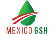 MexicoGSH